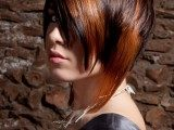 hair-color-ideas-for-brunettes-with-blonde-highlights-160x120-7777408