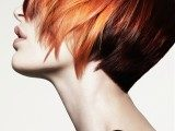 hottest-fall-winter-2015-hair-color-trends-ideas-160x120-2880549