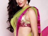 indian-designer-blouse-designs-for-net-sarees-2015-for-girls-160x120-5238957